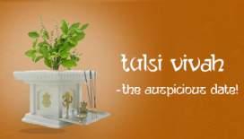 Tulsi Vivah – The Auspicious Date
